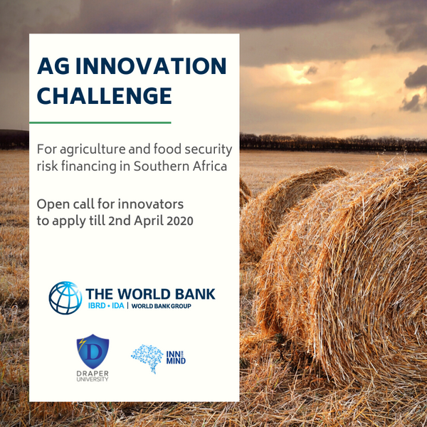 The World Bank Ag Observatory cooperated with InnMind to scout startups for an agritech sector in Southern Africa